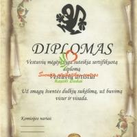 diplomai, artistui