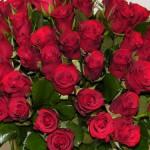 geliu pristatymas lietuvoje raudonos rozes