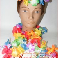 havajietiska girlianda