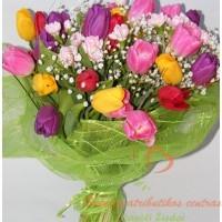 Tulpių puokštė pavasaris