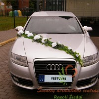 Auto-numeris_vestuves_3646