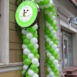 balionu-arka-zalia-virtuve-0202