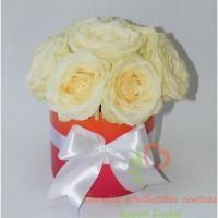 Baltos-rozes-raudonam-vazone-1