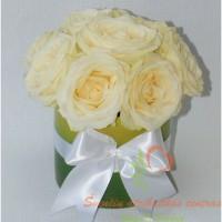 Baltos-rozes-zaliam-vazone-2