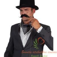 priklijuojami ūsai, priklijuojami ūsai, ispaniški ūsai, ispaniška barzda, vakarėlis, kaukės