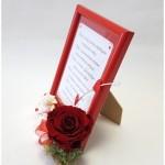 Meilės prisipažinimas su miegančia rože