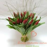raudonų tulpių puokštė, tulpės