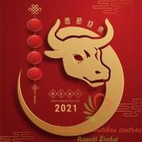 2021 metų simbolis jautis atributika ir dovanos