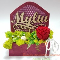 Valentino dienai, gėlės valentino dienai, meilės laiškas, mieganti rožė
